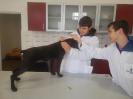 Ветеринарни клиники_4