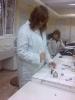 ПГВМ лабораторни практики